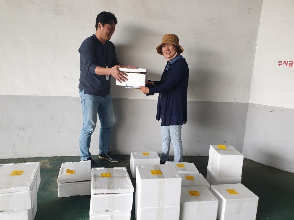 평택시 안중출장소, 지역농산물판매 활성화를 위한'농산물 직거래'추진